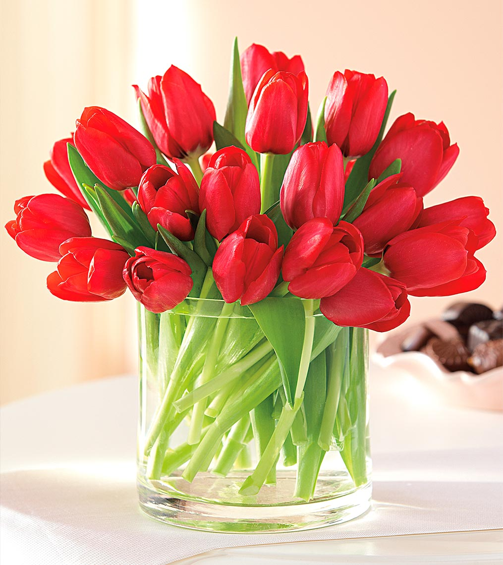 Tulips_chocolate